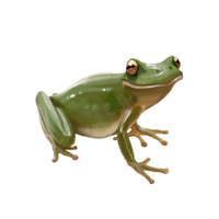 compagnon-grenouille.png